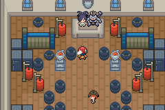 Pokemon Light Platinum Gym Leaders in Lauren